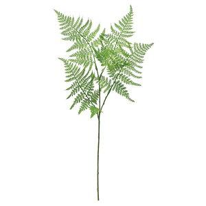 《 造花 グリーン 》◆とりよせ品◆Asca アスパラガスファーン グリーンインテリア フェイク