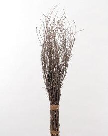 《 ドライフラワー 》◆とりよせ品◆大地農園 白樺小枝 70cm 70cmドライ 自然素材