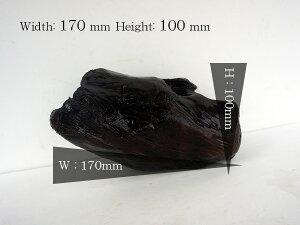 流木 アクアリウム ボトリウム ビバリウム ウィローモス用等 アク抜き 煮沸済み 自然流木 水槽流木 Sサイズ _as20