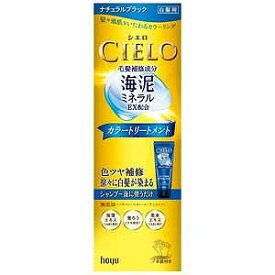 ホーユー 「CIELO(シエロ)」カラートリートメント ナチュラルブラック 180g シエロカラートリートメント(ナチュ