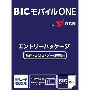 OCN BIC モバイル ONE 音声・SMS・データ共通 OCN034