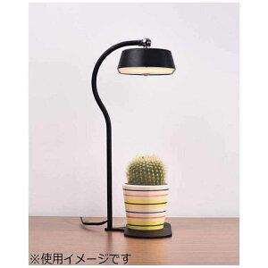 オリンピア照明 LEDスタンド MST01-BK ブラック 電球色