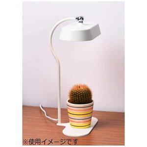 オリンピア照明 LEDスタンド MST01-IV アイボリー 電球色