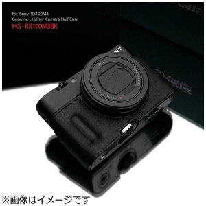 GARIZ 本革カメラケース 【ソニー RX100MIII/RX100MII/RX100用】(ブラック) HG-RX100M3BK