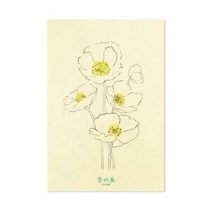 GRASSETOKYO 香の具 専用ポストカード フラワー KNG8861