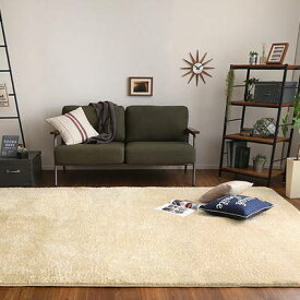 ラグ カーペット おしゃれ ラグマット 絨毯 北欧 安い ふわふわ 厚手 極厚 ふかふか シャギーラグ あったか 厚い 200×300 5畳 6畳 洗える 部屋