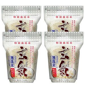 川島米穀店 特別栽培米 玄氣 1.5kg 無農薬 真空パック 無農薬 玄米 無洗米