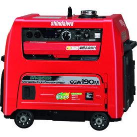 (代引き不可)新ダイワ ガソリンエンジン発電機兼用溶接機(EGW190M-IST)