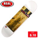 REAL リアル デッキ LTD TEMPLE OF SKATE DECK 8.06 RAD-612 スケートボード SKATEBOARD