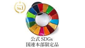 【正規販売店】 【国連本部限定販売】 SDGs ピンバッジ 日本未発売 UNDP 丸みタイプ 1個 バッチ 国連 おすすめ 正規品 sdgs 17 目標 公式 安心保証