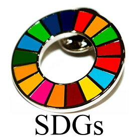 正規品 SDGs 国連 17色 公式 ピンバッジ バッジ バッチ バッヂ 襟章 留め具 日本未発売 (1個)