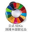 \正規販売店/ 国連本部限定販売 SDGs ピンバッジ 日本未発売 UNDP 丸みタイプ 1個 バッチ 国連 おすすめ 正規品 sdg…