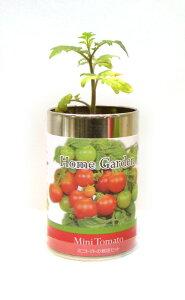 栽培セット ホームガーデン 園芸 ガーデニング インテリア ギフト 室内 かわいい 栽培キット ミニトマト スイートバジル ワイルドストロベリー イタリアンパセリ トウガラシ