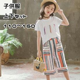 キッズ ジュニア 子供 女の子 セットアップ 半袖 シャツ ズボン Tシャツ 半ズボン 夏服 カジュアル かわいい シンプル