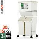 ゴミ箱 キッチン 分別 ワゴンペール 60L ( 分別ごみ箱 2段 )