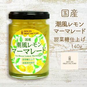 国産 潮風レモンマーマレード 140g ジャム マーマレード フルーツ 甘さ控えめ 甜菜糖 フルーティ 国産