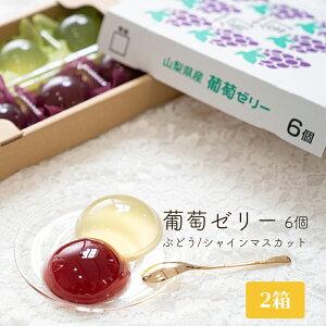 フルーツゼリー 2箱 (6個入り×2) 巨峰&シャインマスカット 送料無料 果物ゼリー お土産 プレゼント ぶどう 葡萄 ブドウ スイーツ おやつ
