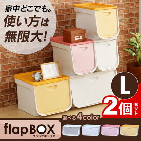 フラップボックス FLP-L 2個セット ワイド アイリスオーヤマ前開き フタ付き 蓋付き おしゃれ 収納 収納ボックス フタ付き 収納ケース 衣装ケース 収納box ラック 衣類 クローゼット ピンク 白 透明 黄 かわいい ボックス 箱 家具 [cpir]一人暮らし セット 家具 収納