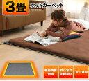 ホットカーペット 3畳 TEKNOS 本体 TWA-3000BI 電気カーペット 3畳用 ホットマット ミニマット 電気マット 195×235cm…
