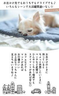 【予約商品8月23日順次発送】犬小型犬犬用猫猫用ベッドマットペットファーフリルレースおしゃれブランドかわいい返品不可Radymoreショートファーステイマット