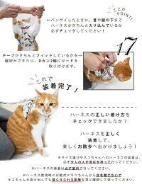 【RADICA・ラディカ】【猫・ネコ・キャット・cat】【猫用品・胴輪】キャットストロールソフト・ハーネス&リード【胴輪】【リード】【ハーネス】【はーねす】【Harness】