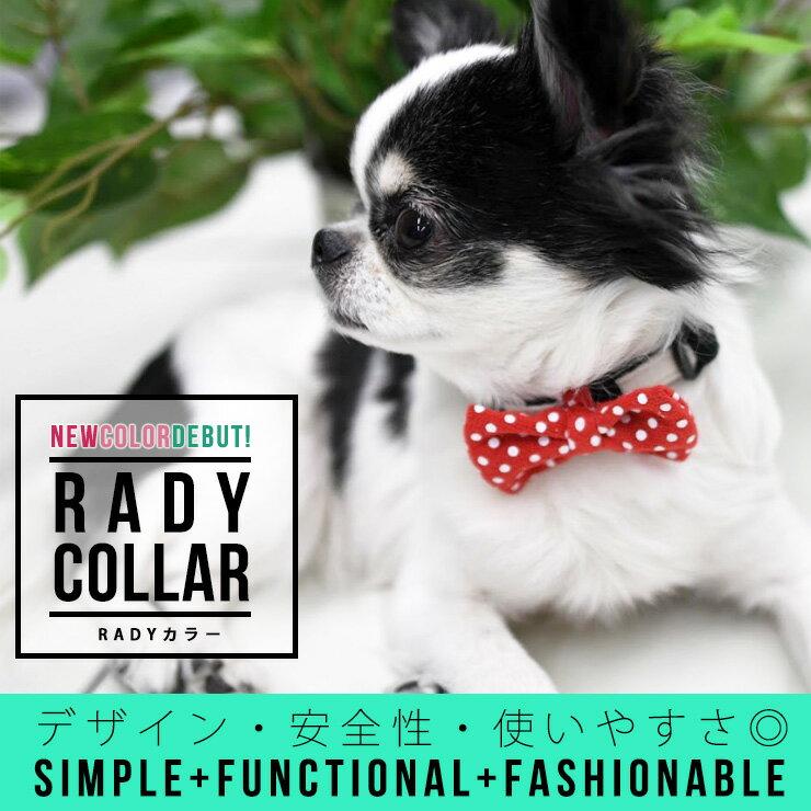 *1点のみメール便選択可*【RADICA・ラディカ】RADYカラー/カジュアル 【首輪】【ラディ】【犬 首輪】【ファッション カラー】【テープ】【リボン】【ヒッコリー】