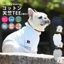 犬 小型犬 犬用 Tシャツ 犬服 ウェア ドッグウエア 犬の服 プレサーモ25 防蚊加工 サイズ交換OK/返品不可 メール便可 …