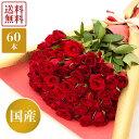 国産赤バラの花束60本 産地直送 花 花束 ボリュームブーケ ロング 赤薔薇 ローズ 生花 ギフト プレゼント 女性 還暦祝…