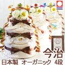 到着9月24日(火)可★おむつケーキ バスタオル付き ★ おむつケーキ 【 出産祝い 送料無料】 オーガニック3段 おむつケ…