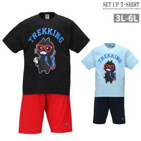 夏服 上下セット 大きいサイズ メンズ セットアップ 半袖tシャツ ハーフパンツ トレーニング C010328-08