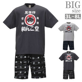 ハーフパンツ 上下 セットアップ 夏 大きいサイズ メンズ 半袖tシャツ 黒柴印 和んこ堂 C010607-08