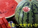 西瓜の本場!大栄すいか2Lサイズ2玉産地箱入り【鳥取の旬のフルーツ「夏」】6月中旬ごろより順次発送予定【同梱不可】…