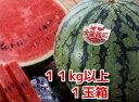 西瓜の本場!大栄すいか11kg以上の特大玉1玉産地箱入り【鳥取の旬のフルーツ「夏」】6月中旬ごろより順次発送予定【同…