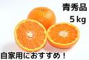 山口県の旬の果物【話題の新品種!ゆめほっぺ】「せとみ」の極上品