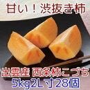 島根特産西条柿こづち5kg箱大玉