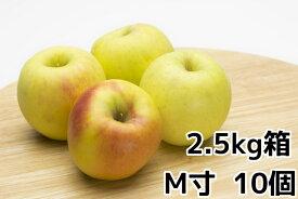 ぐんま名月2.5kg自家用サイズ(10玉)箱旬のおすすめリンゴ【ぐんま名月 取り寄せ】10月下旬〜11月上旬より順次発送予定