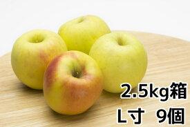 ぐんま名月2.5kg(L寸9玉)箱【ご贈答・自家用に最適】旬のおすすめリンゴ【ぐんま名月 取り寄せ】10月下旬〜11月上旬より順次発送予定