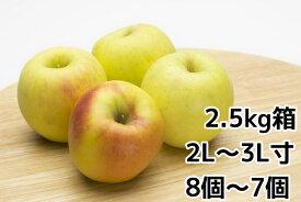 ぐんま名月2.5kg(大玉7〜8玉)箱【りんご ご贈答に最適】旬のおすすめリンゴ【ぐんま名月 取り寄せ】10月下旬〜11月上旬より順次発送予定