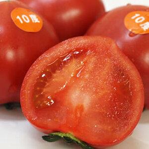 【出雲フルーツトマト】ココロちゃんお試しに最適♪【高糖度トマト】島根産フルーツトマト10度500g店長おすすめ!立久恵とまと【とまと 取り寄せ】【トマト 取り寄せ】1月上