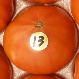 【出雲フルーツトマト】お試しに最適♪【高糖度トマト】島根産フルーツトマト13度500g店長おすすめ!立久恵とまと収穫できた時のみ発送予定【日時指定不可】【同梱不可】