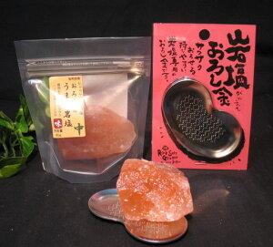 おろし用うま味岩塩(食塩)120gとステンレスおろし金 ヒマラヤのミネラル食用塩 食用塩公正マーク付