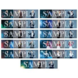 【Op.2】ランダムブロマイド