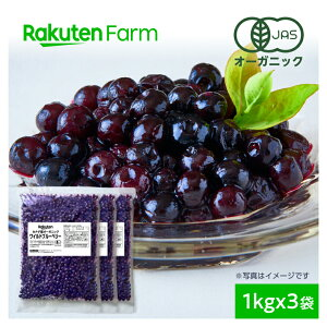 【割引クーポンあり】【冷凍】100%オーガニック 冷凍ブルーベリー1kg×3袋 (ワイルドブルーベリー、野生種)