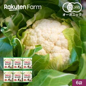 【冷凍食品】国産オーガニック 冷凍カリフラワーセット 6袋