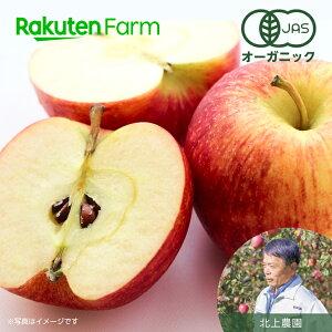 【ポイント15倍】青森県産 有機りんご サンふじ 3kg こだわり農家直送 北上農園