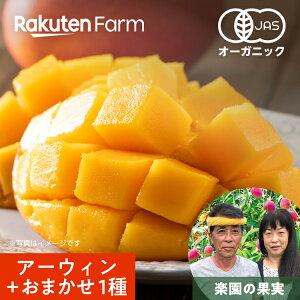 【くだもの祭り】希少な有機マンゴー(アーウィン&おまかせ1種)1kg (2〜3玉) 有機JAS認証 沖縄県 来間島 楽園の果実 こだわり農家直送