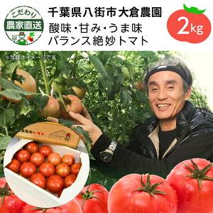【割引クーポンあり】こだわり農家直送 千葉県大倉農園 酸味と甘みのバランス絶妙トマト トマト2kg