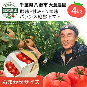 【割引クーポンあり】こだわり農家直送 千葉県大倉農園 酸味と甘みのバランス絶妙トマト SS〜Lトマト4kg