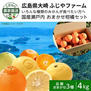 【300円OFFクーポン配布中】こだわり農家直送 広島県大崎上島 ふじやファーム いろんな種類のみかんが食べたい方へ 国産瀬戸内 よくばり柑橘セット 4kg