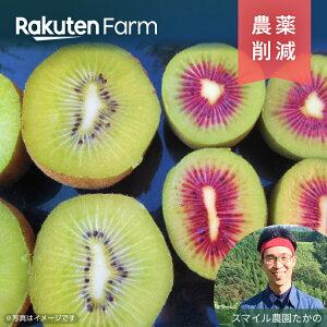 国産キウイ 赤黄2色ミックス 2kg 【ポイント15倍】 こだわり農家直送 愛媛県 スマイル農園たかの